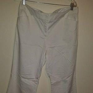Express Design Studio Editor Pants size 12